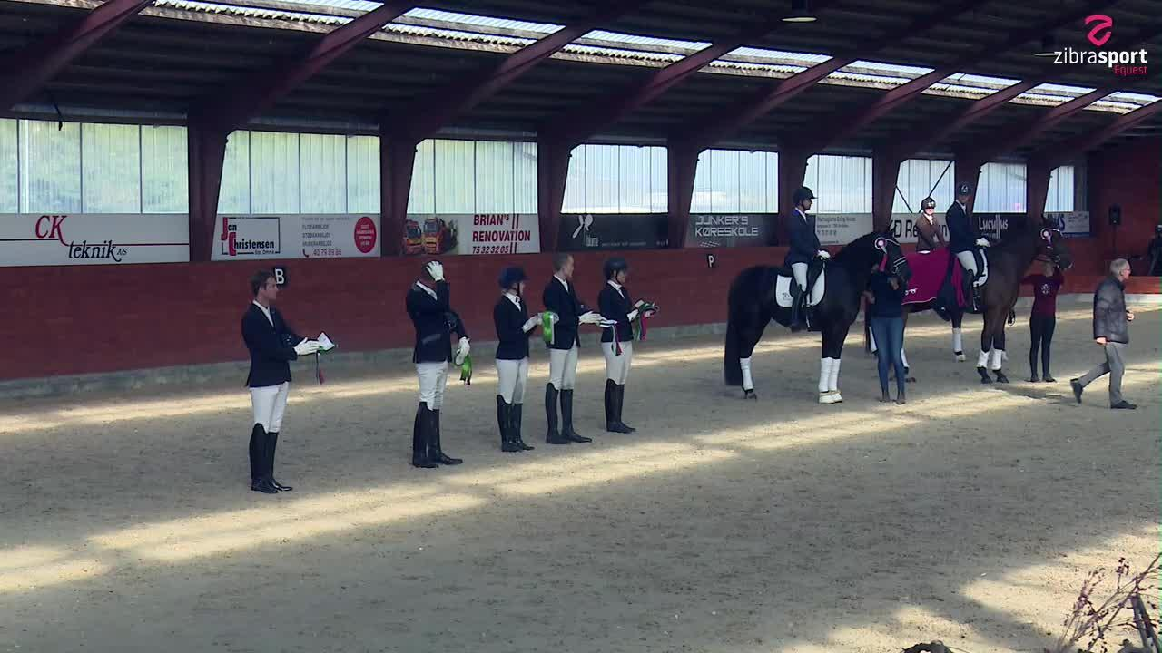 Second qualifier – PAVO and DRF Young Horse Championship 4-year dressage