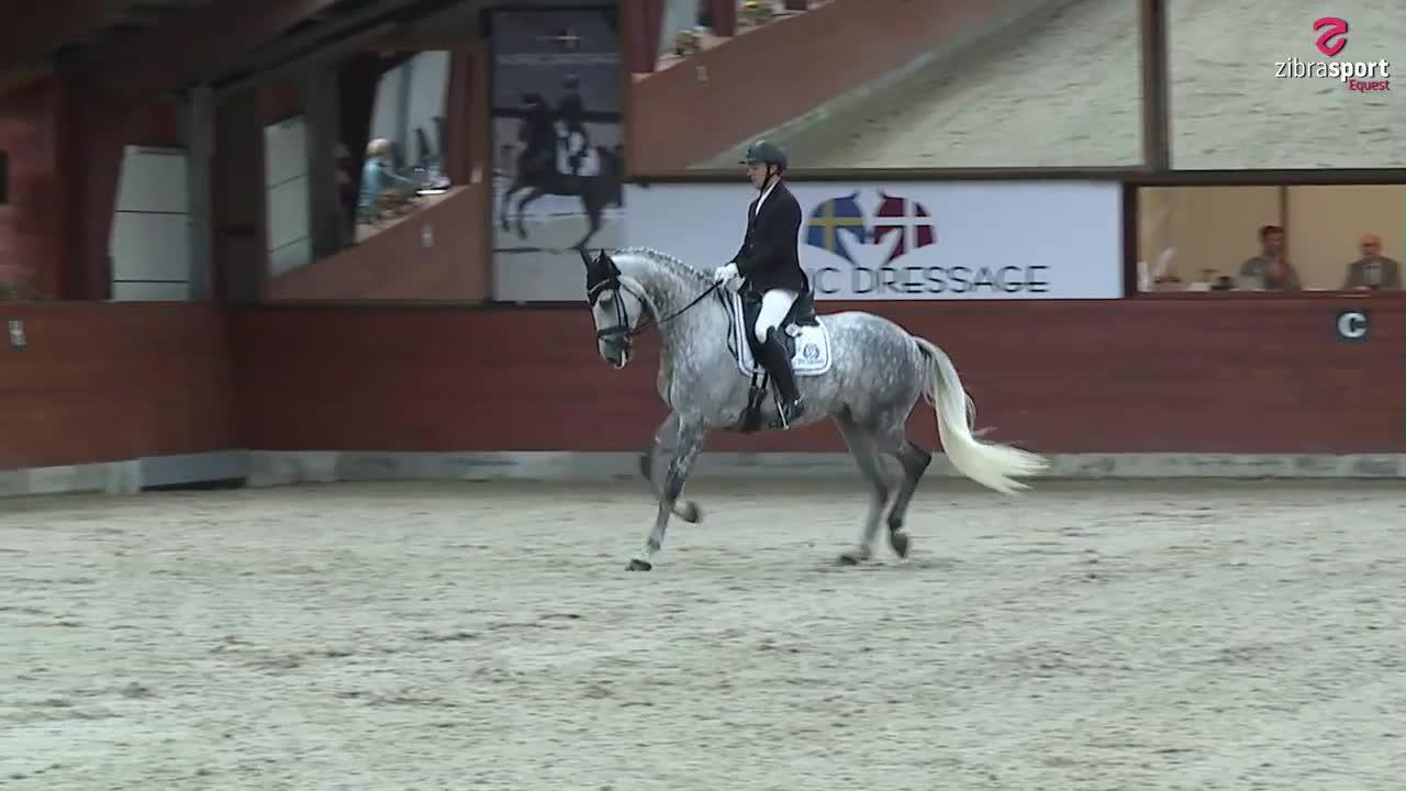 Second qualifier – PAVO and DRF Young Horse Championships 6-year dressage
