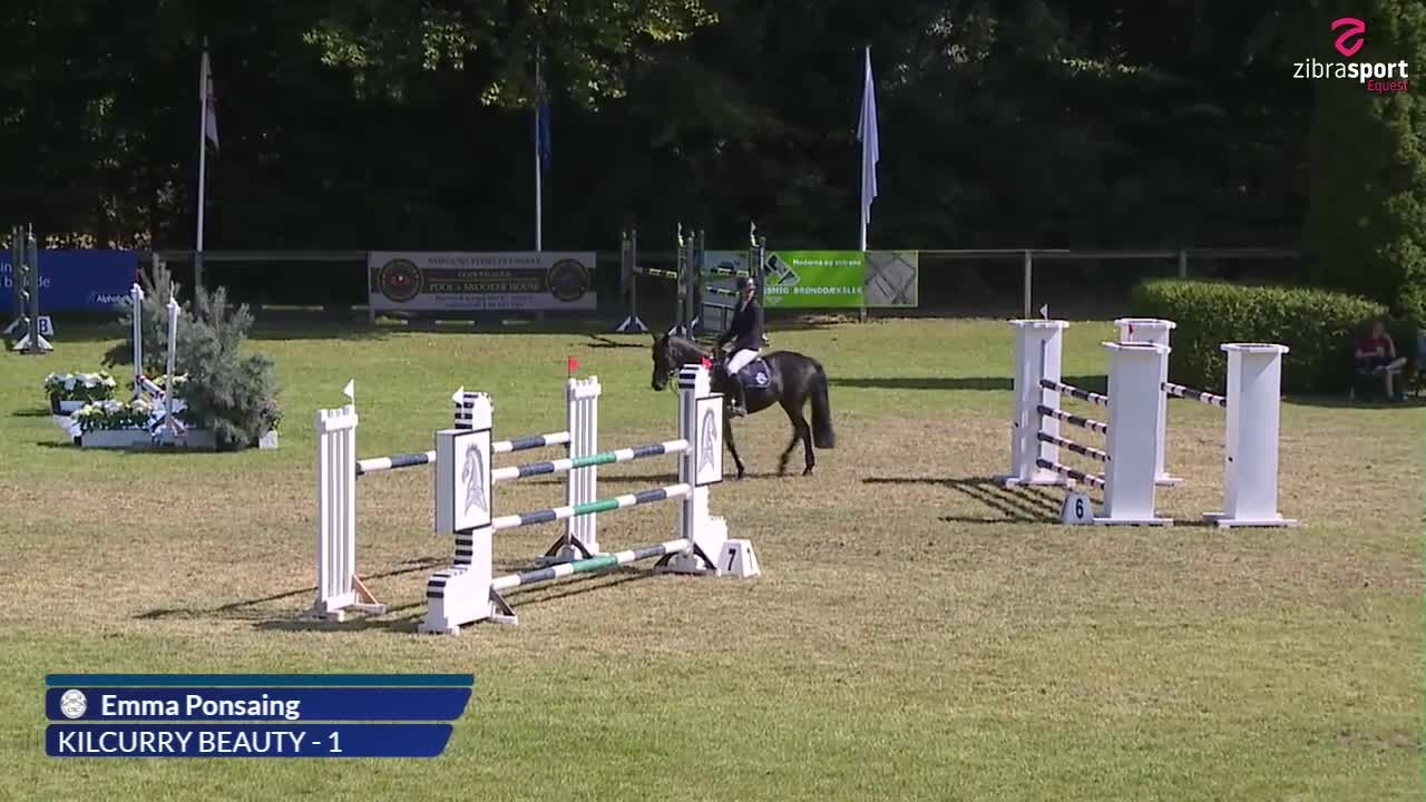 Agria DRF Championship in jumping cat 1 – part 1