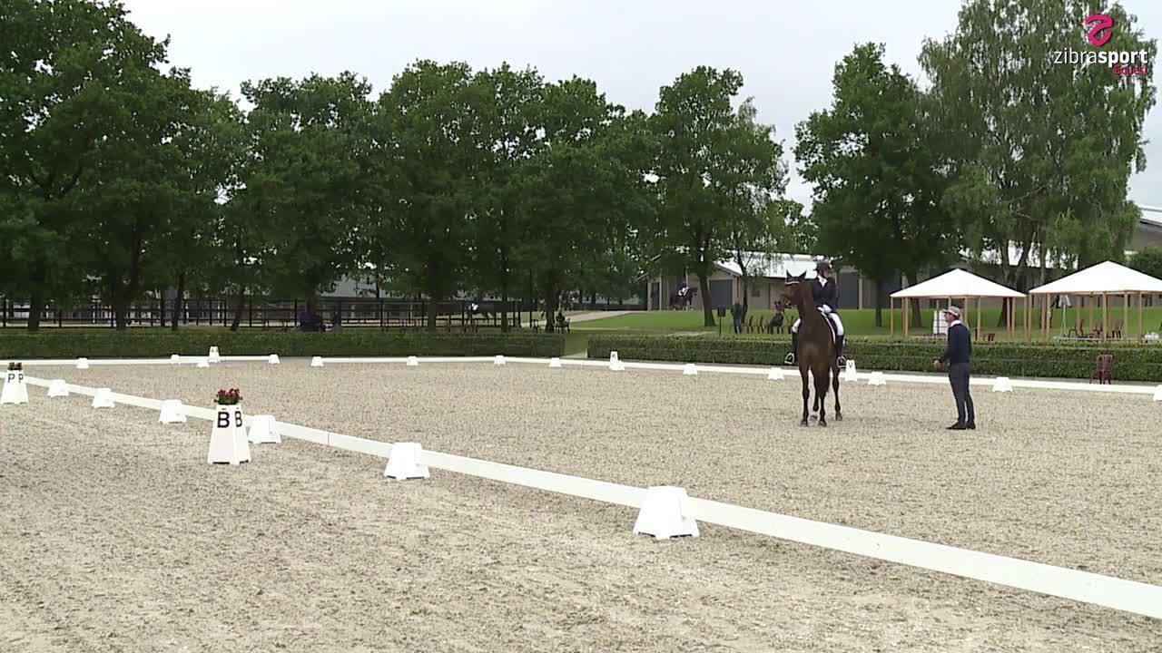 UVM udtagelse for 6 års heste – finale program