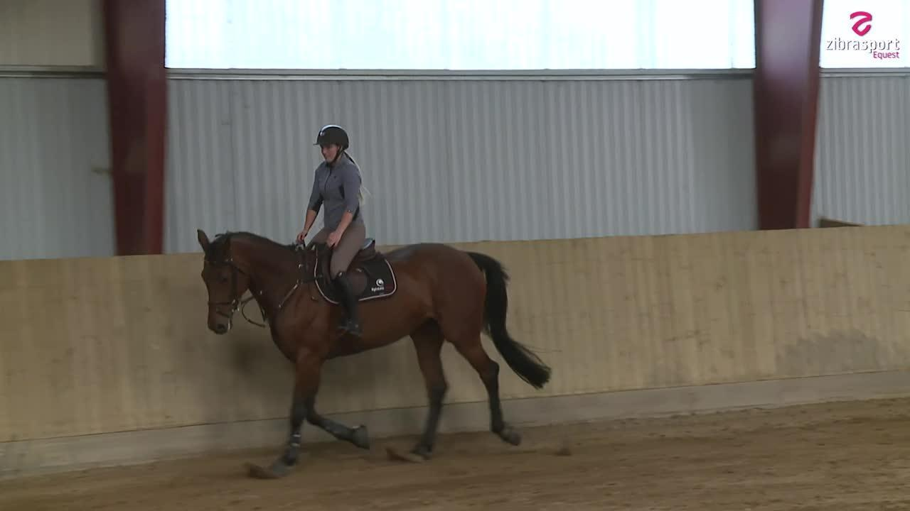 Dressage with a jumping horse with Jessica Toelstang