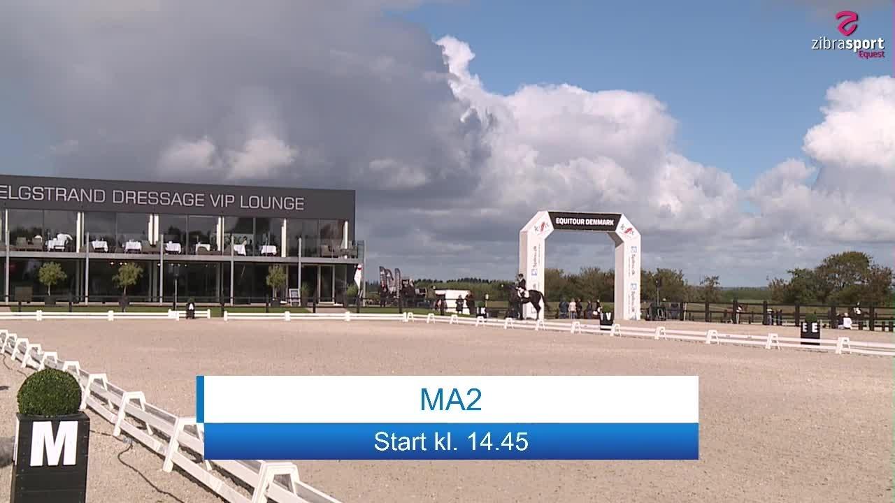 RADISSON MA2 – Presented by BB HORSE