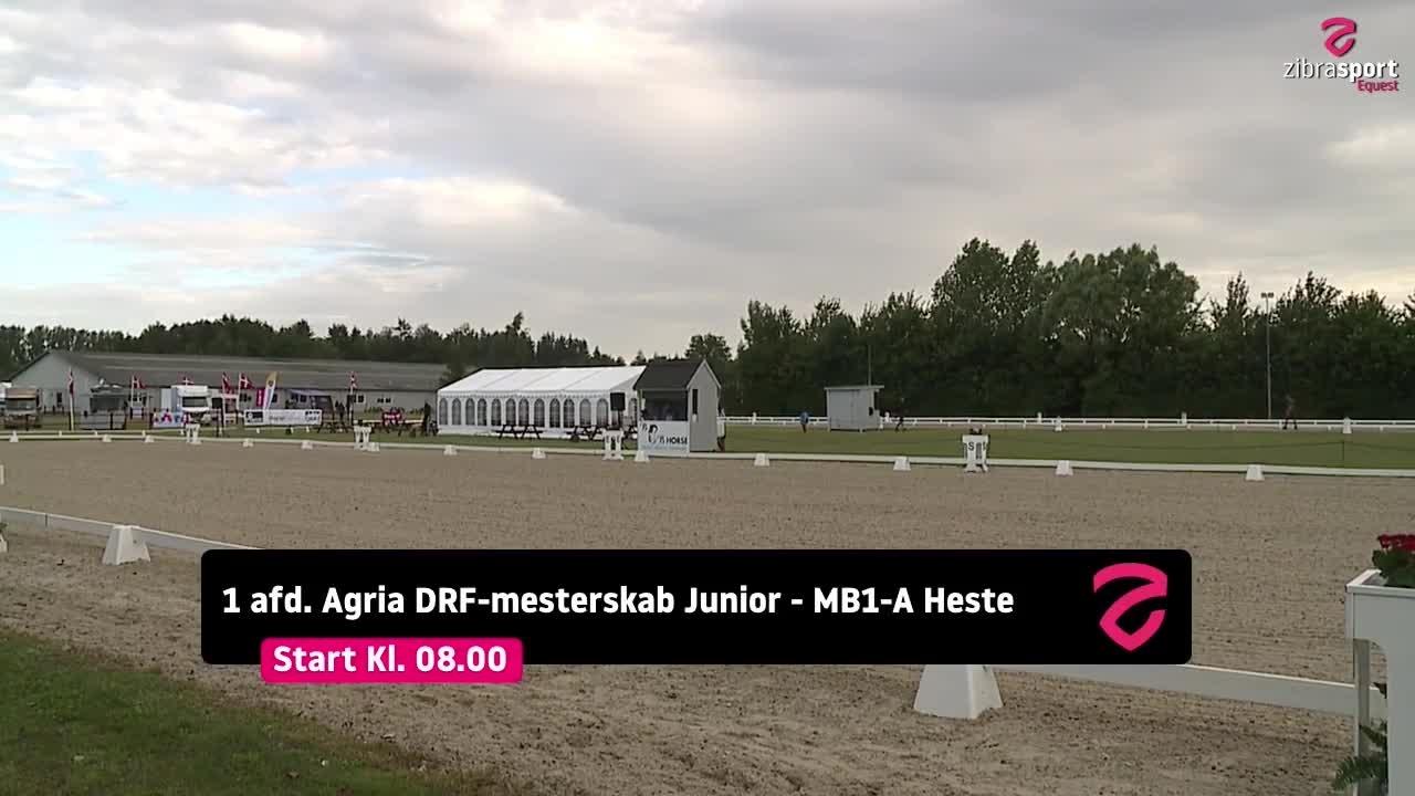 1. afd. Agria DRF-mesterskab Junior 2021
