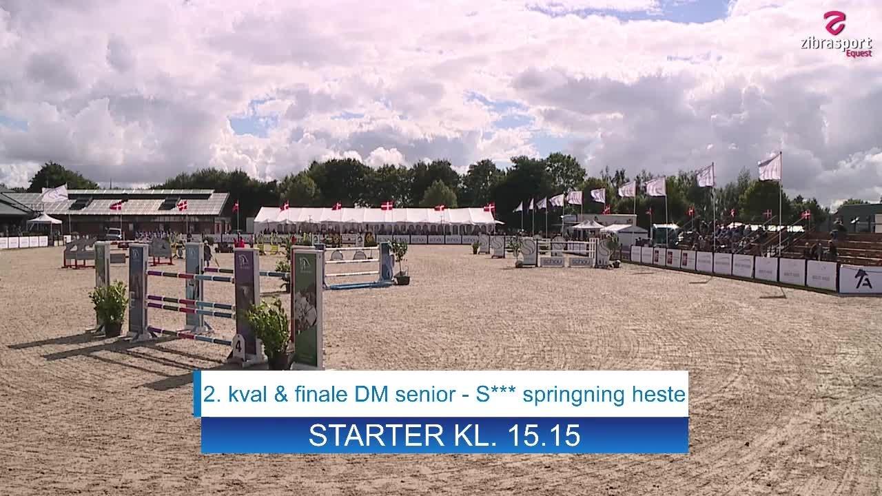 2. kval & finale DM senior – S*** springning