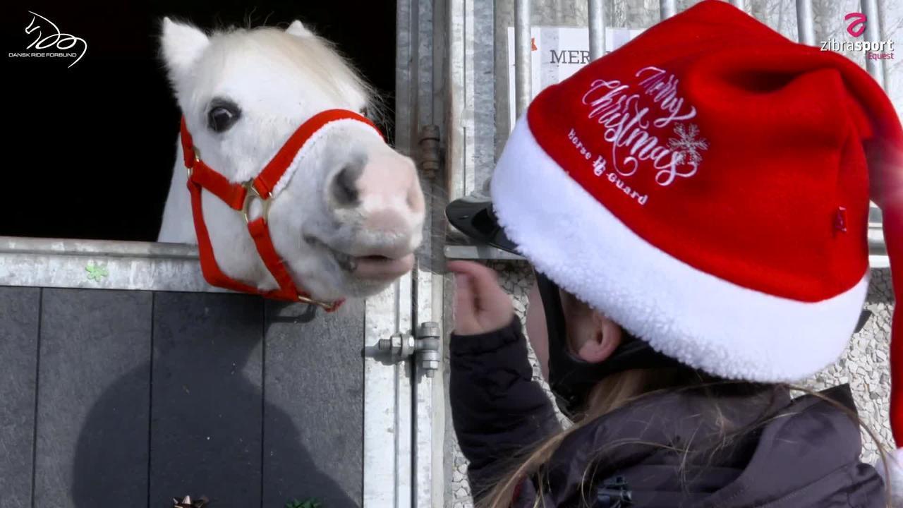Jul med Sofie og Stallone – 3. advent