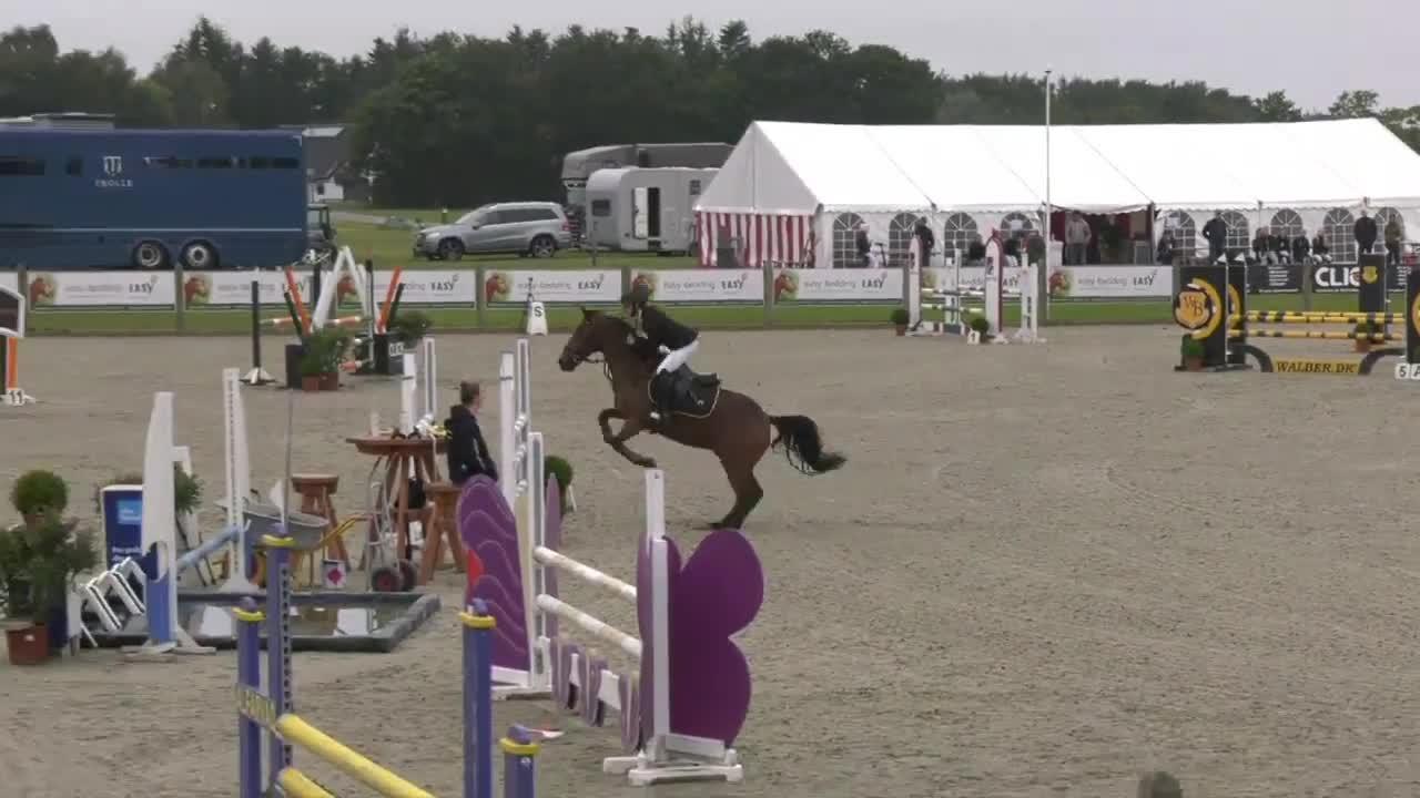 B-Final Agria DRF Jumping Championship for Pony Teams – MB2** (115/105/95 cm) B1