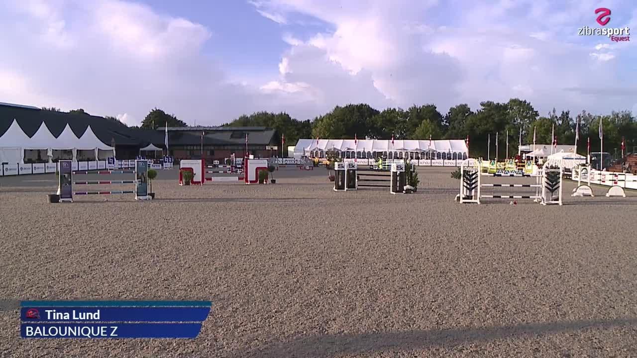 MA1* Jumping Horses (135 cm) A