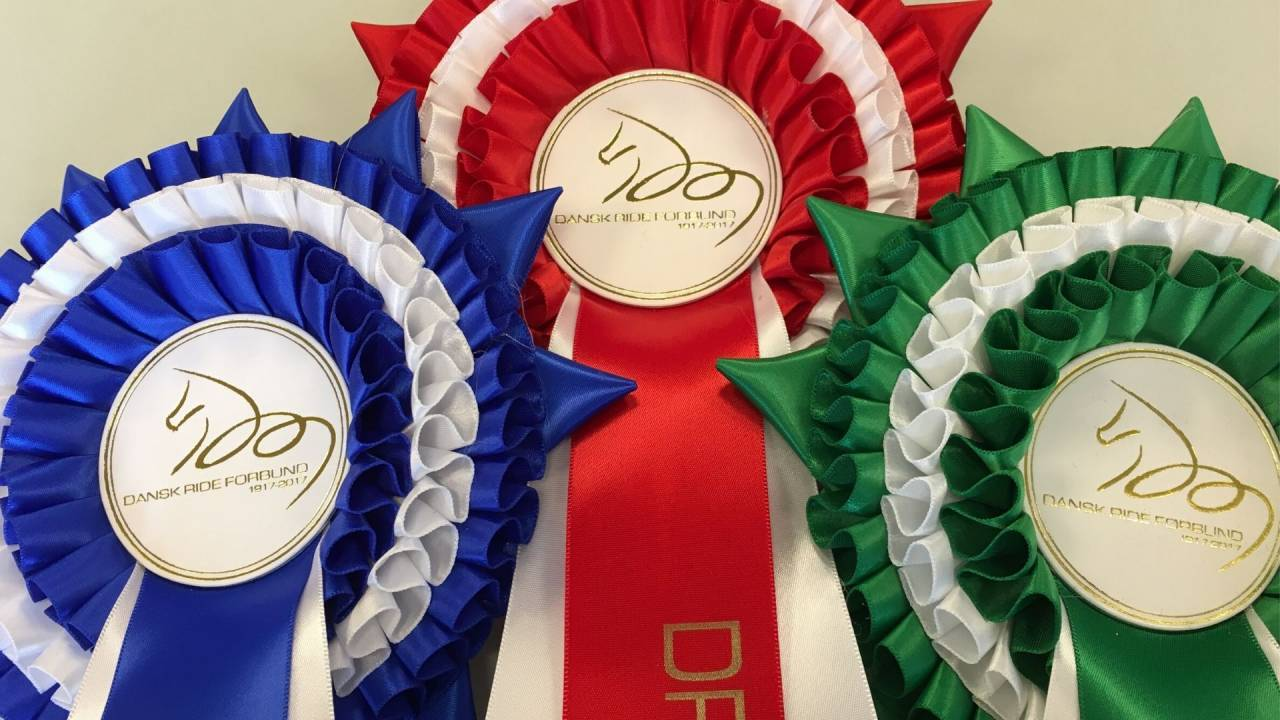 The Final in DRF-championship – Team Jumping ponies