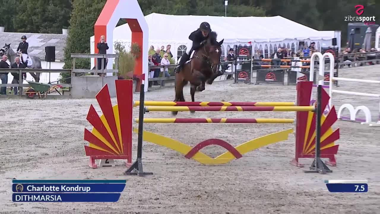 Agria DRF-championship Jumping, Horses Teams, 1. round