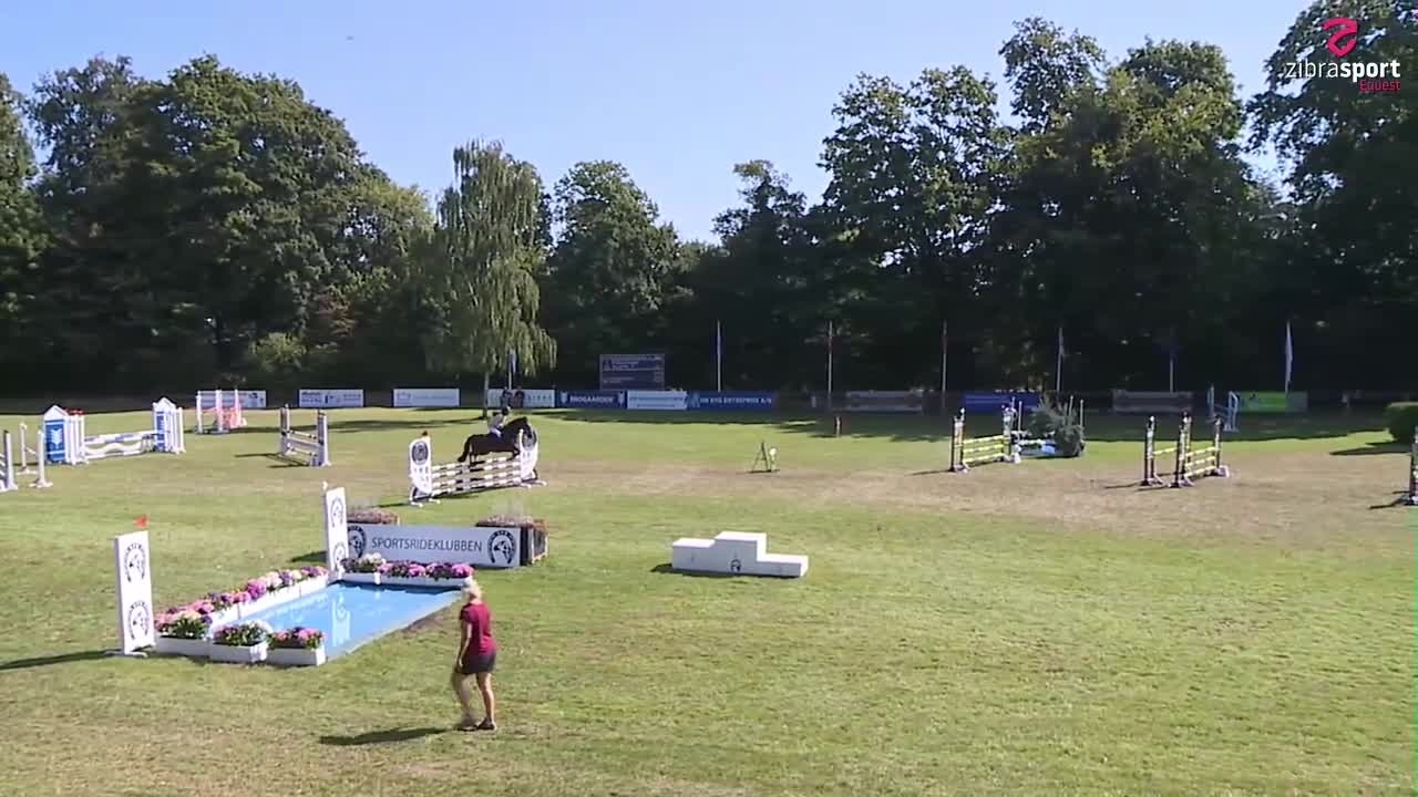 Agria DRF championship in jumping cat. 3 final 2020