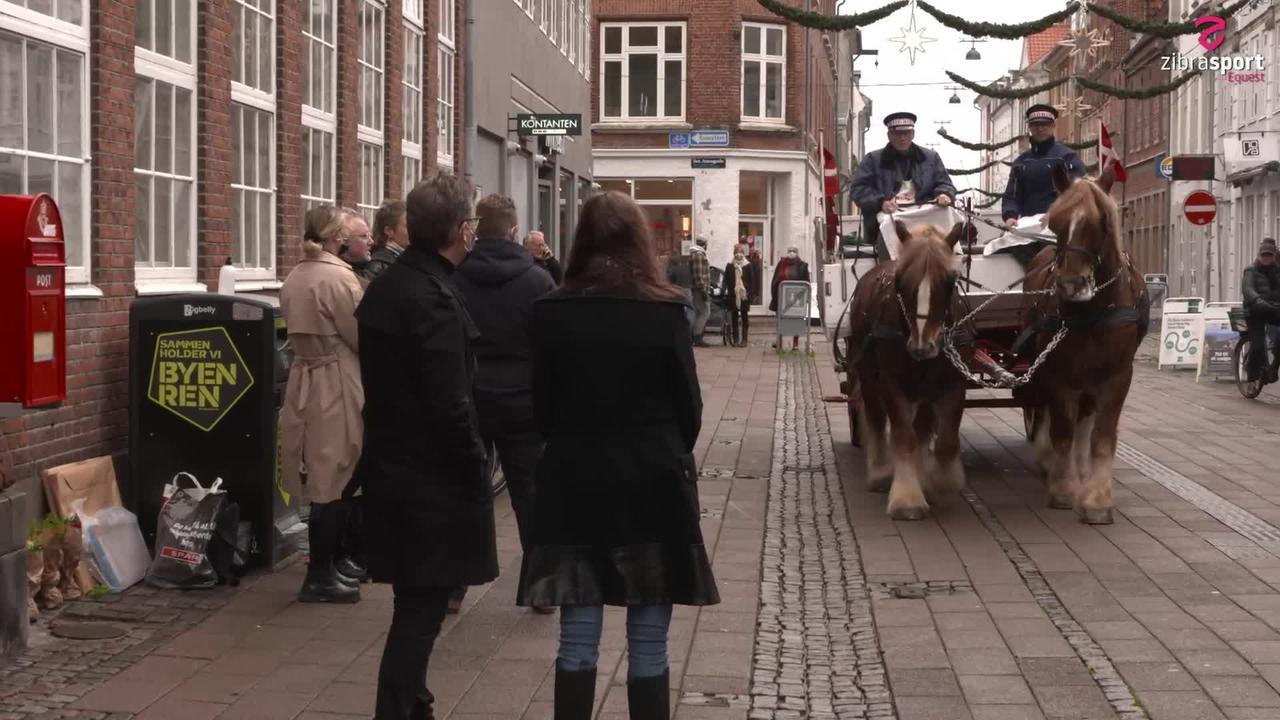 Med Carlsberg-hestene på arbejde i Helsingør
