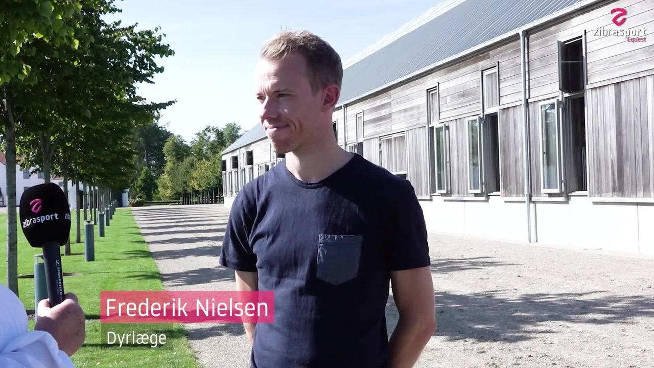 Dyrlæge Frederik Nielsen om OL og EM
