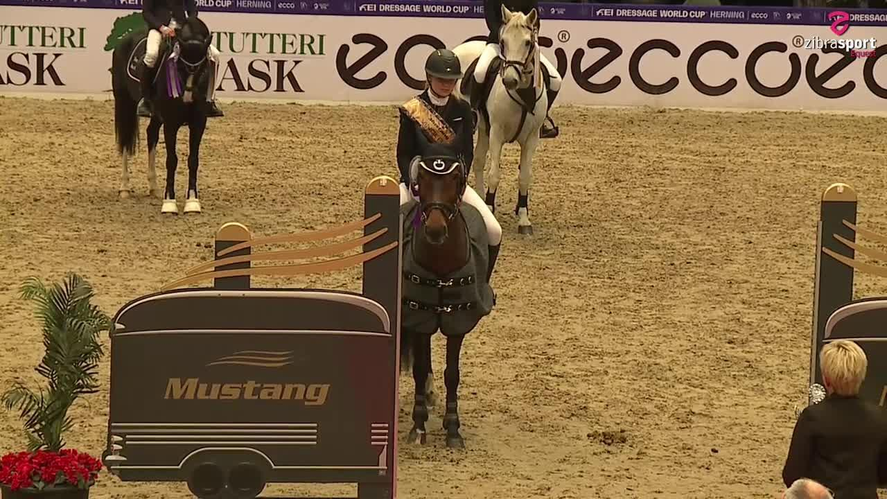 Finale Mustang Cup kat. I, MB1* (105 cm) S4 – Herning 2021