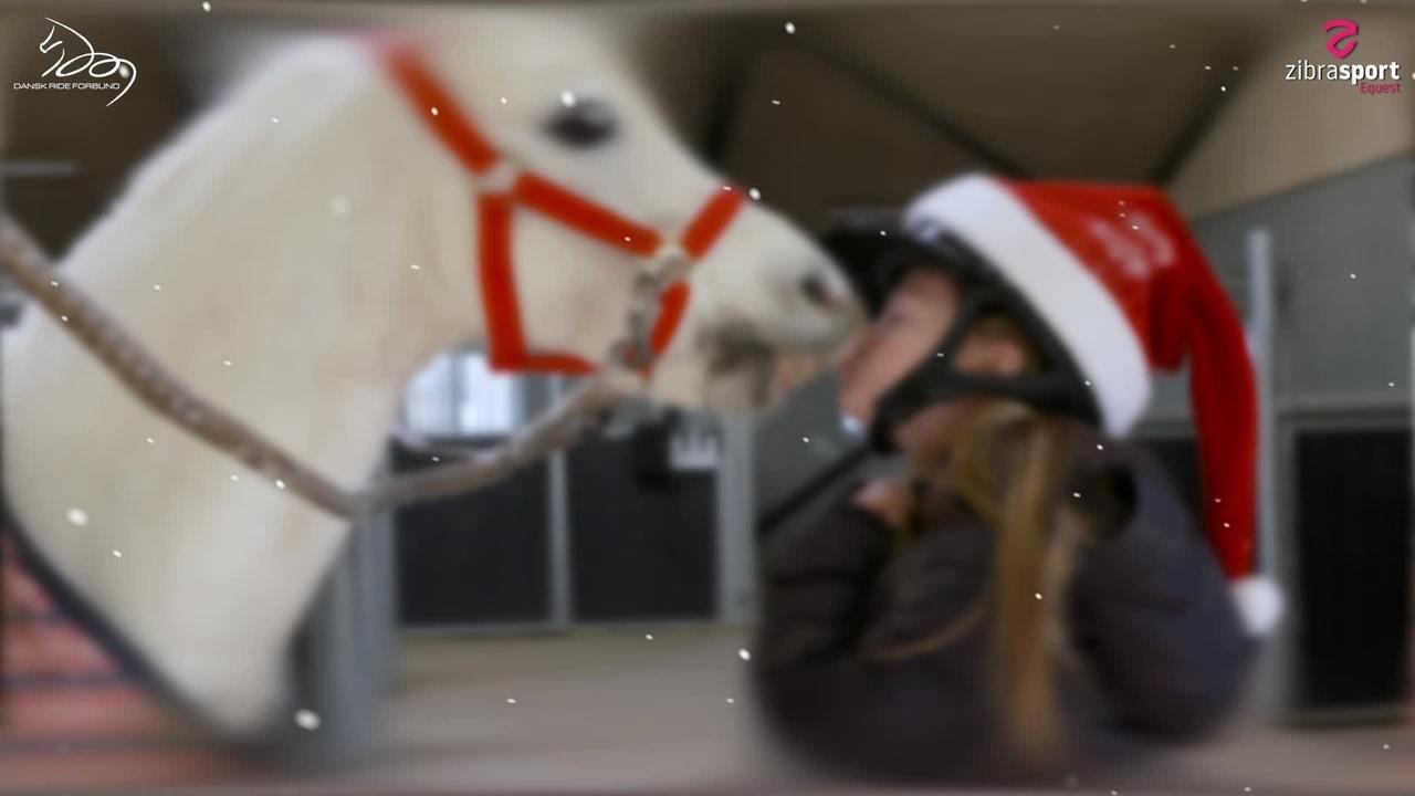 Jul med Sofie og Stallone – 2. Advent