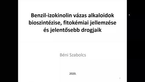 Thumbnail for entry Benzil-izokinolin vázas alkaloidok