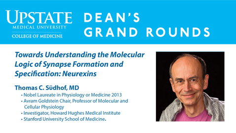 Thumbnail for entry Dean's Grand Rounds-Towards Understanding the Molecular Logic of Synapse Formation and Specification: Neurexins-03-27-2018