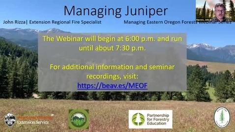 Thumbnail for entry Managing Eastern Oregon Forests: Managing Juniper