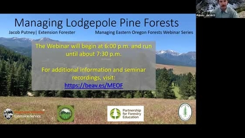 Thumbnail for entry Managing Eastern Oregon Forests: Managing Lodgepole Pine