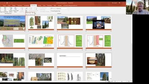 Thumbnail for entry Managing Eastern Oregon Forests: Managing Ponderosa Pine