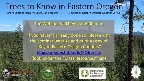 Thumbnail for entry Forests of Eastern Oregon