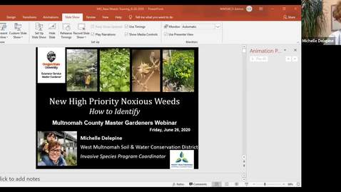 Thumbnail for entry New High Priority Noxious Weeds—How to ID