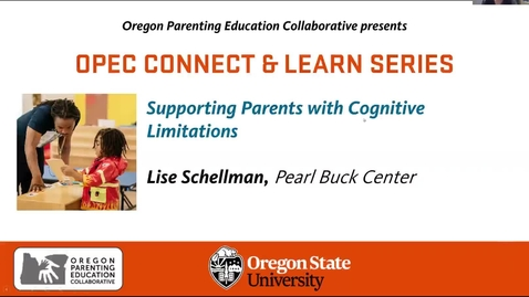 Thumbnail for entry Supporting Parents with Cognitive Limitations