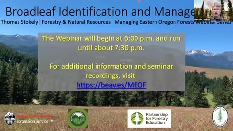 Thumbnail for entry Managing Eastern Oregon Forests: Broadleaf Tree Identification and Management