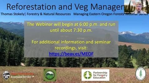 Thumbnail for entry Managing Eastern Oregon Forests: Reforestation and Vegetation Management