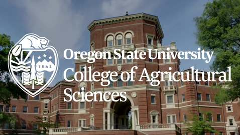 Thumbnail for entry Leadership Academy, College of Agricultural Sciences