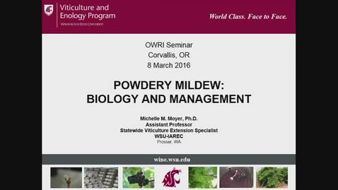 Thumbnail for entry OWRI Seminar: Powdery Mildew: Biology and Management 3.8.2016
