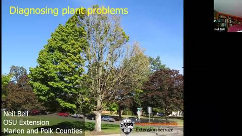 Thumbnail for entry Diagnosing plant problems: A systematic approach - Metro area OSU Extension Master Gardener - Garden Webinar Series, August 21, 2020