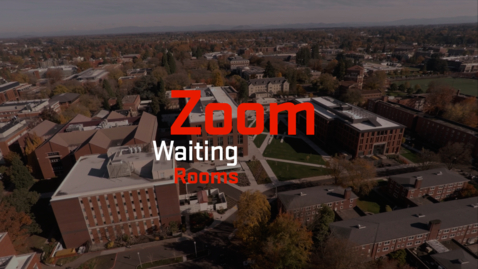 Thumbnail for entry Zoom   Waiting Rooms