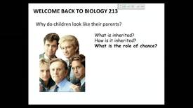 Thumbnail for entry BI 213 - Lecture 04