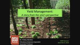 OWRI Seminar: Yield Management