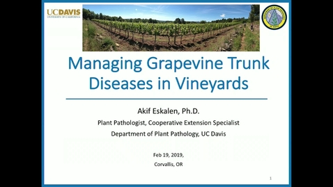 Thumbnail for entry 20190219  Managing Grapevine Trunk Diseases in Vineyards