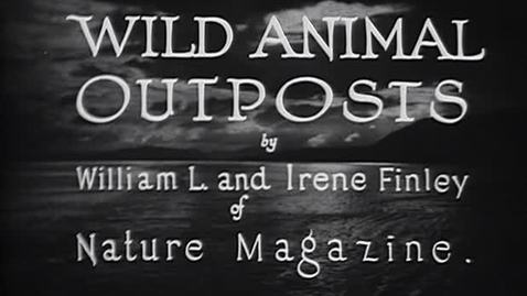 "Thumbnail for entry ""Wild Animal Outposts,"" 1926."