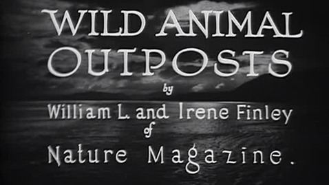 """Thumbnail for entry """"Wild Animal Outposts,"""" 1926."""