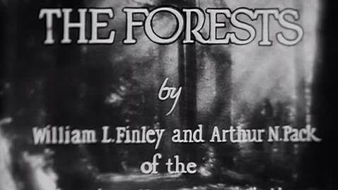 "Thumbnail for entry ""The Forests,"" 1927."