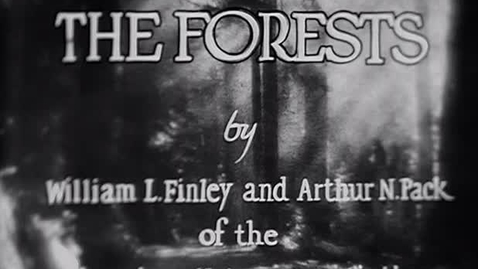 """Thumbnail for entry """"The Forests,"""" 1927."""