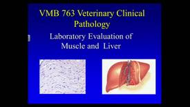 Thumbnail for entry VMB763 Clin Path Lecture 13, Feb. 10, 2014