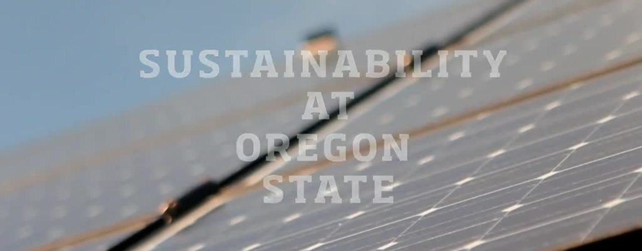 Sustainability at OSU