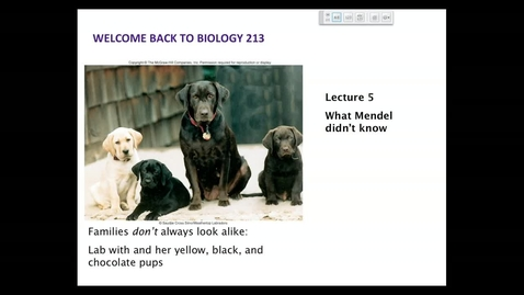 Thumbnail for entry BI 213 - Lecture 05