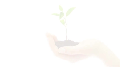 """Thumbnail for entry """"Planting Seeds of Change"""" school gardening film"""