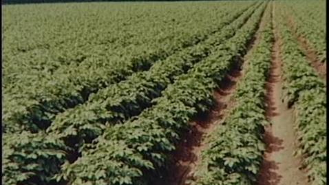 Thumbnail for entry Oregon Tilth documentary - Part 19