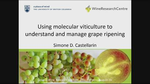 Using Molecular Viticulture to Understand and Manage Grape Ripening