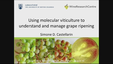 Thumbnail for entry 20150826 Using Molecular Viticulture to Understand and Manage Grape Ripening