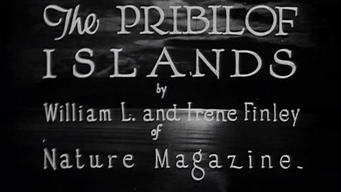 """Thumbnail for entry """"The Pribilof Islands,"""" ca. 1930."""