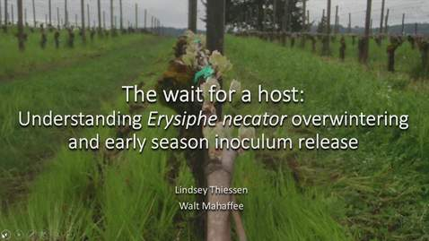 Thumbnail for entry OWRI Seminar: The wait for a host: Understanding Erysiphe necator overwintering and early season inoculum release