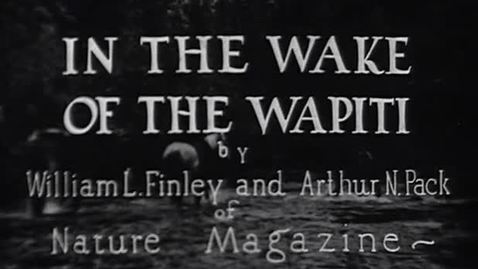 "Thumbnail for entry ""In the Wake of the Wapiti,"" 1930."