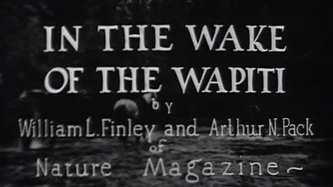 """Thumbnail for entry """"In the Wake of the Wapiti,"""" 1930."""